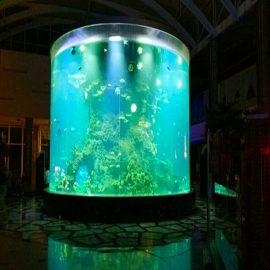 China persoonlike goedkoop super groot ronde pmma glas akwariums duidelike silinder akriel vis tenks
