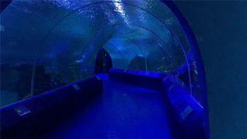 180 of 90 grade Akrielpanele vir Aquarium Tunnel