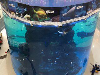 Van 20mm tot 500mm dik akrielpanele vir moderne groot vis