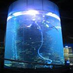 helder akriel silinder groot vistenk vir akwariums of oseaanpark