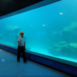 Gegooi muur UV akriel paneel vir akwarium / oceanarium