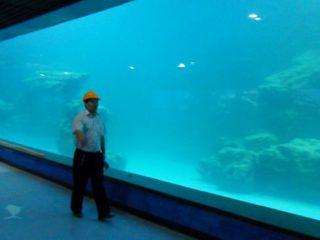 Gegooi muur UV akriel paneel vir akwarium, oceanarium