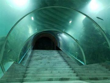 Akriel tonnel akwarium projek prys