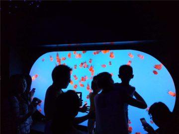 Aangepaste verskillende grootte vorm verskeidenheid Jellyfish Tenk