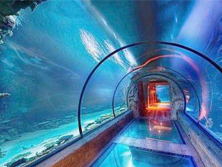 Moderne ontwerp akriel akwarium lang tonnel